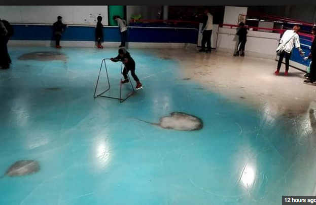 Japan's Dead Fish Ice Rink