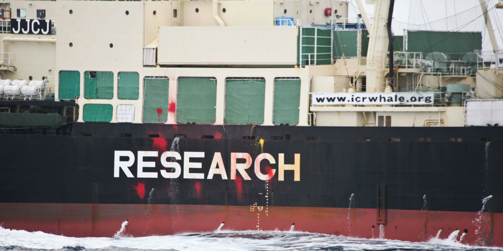 Japan's whaling fleet now has guaranteed funding into the future