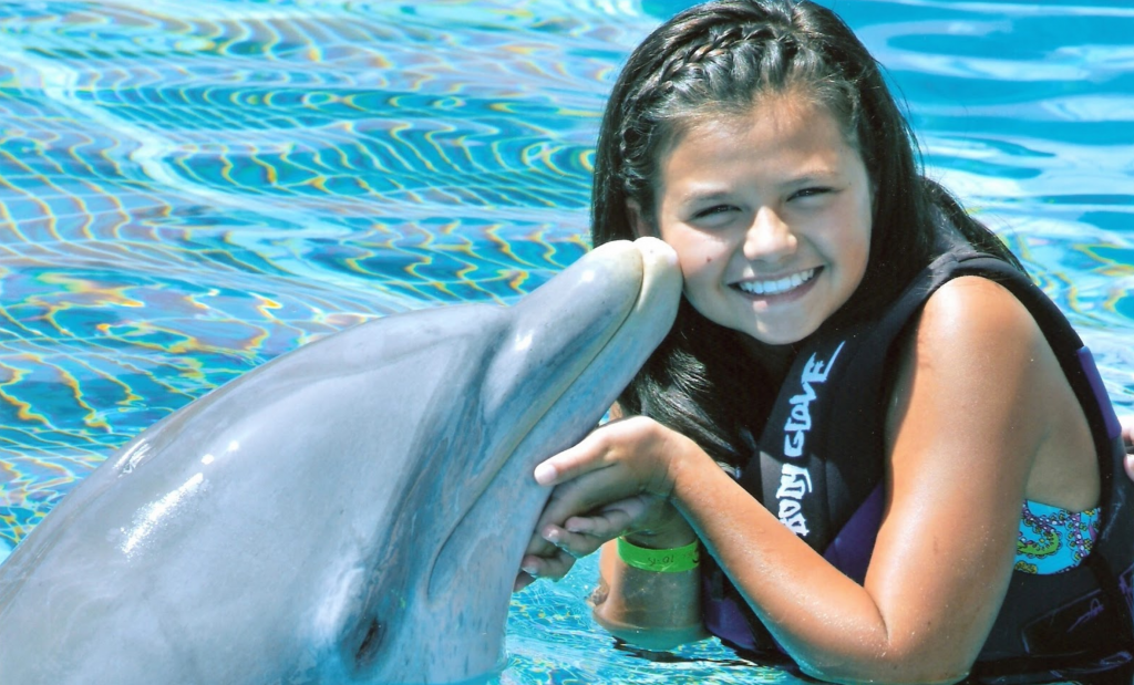"""Swim With Dolphin"" and Dolphin Therapy Sessions"" will thankfully be outlawed in Mexico"